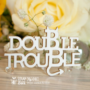 "Чипборд надпись ""Double Trouble"" Hy-045"