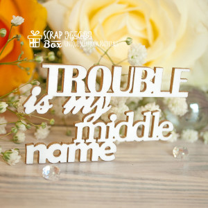 "Чипборд надпись ""Trouble is my middle name"" Hy-046"