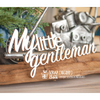 Чіпборд My little gentlman Hi-397